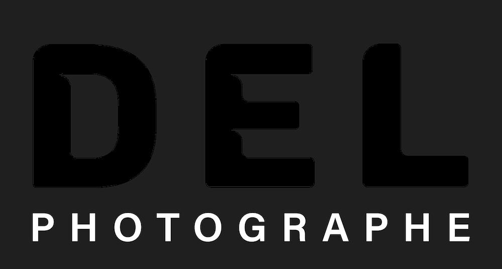 logo-del-delphine-delaunay-black