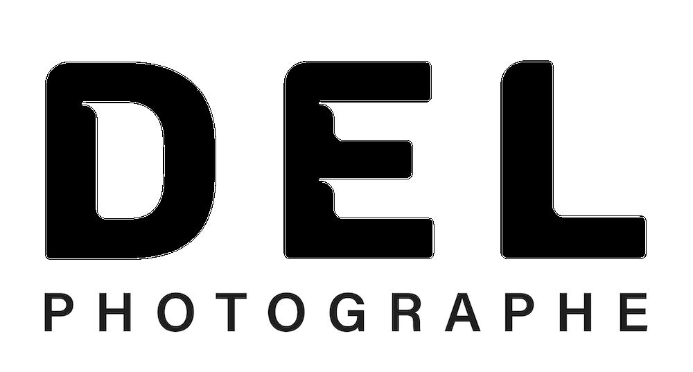 logo-del-delphine-delaunay-white